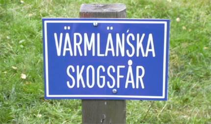 Vrt ml - Svenska kyrkan